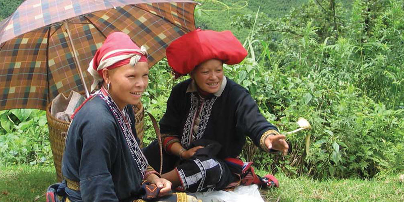 Ladies from hill tribe in Vietnam