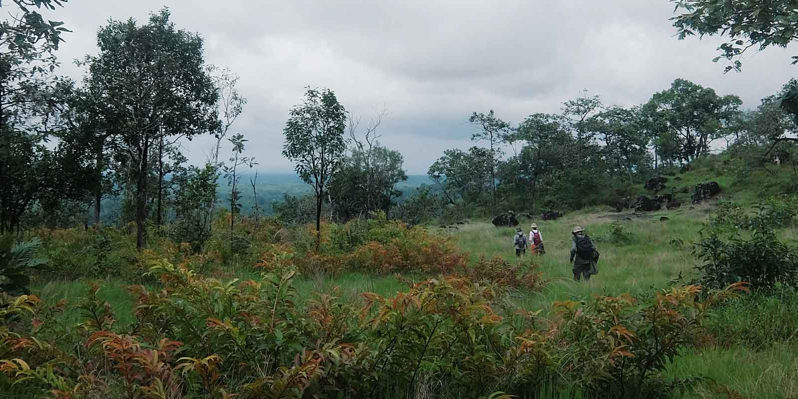 Hikers in Virachey National Park in Cambodia
