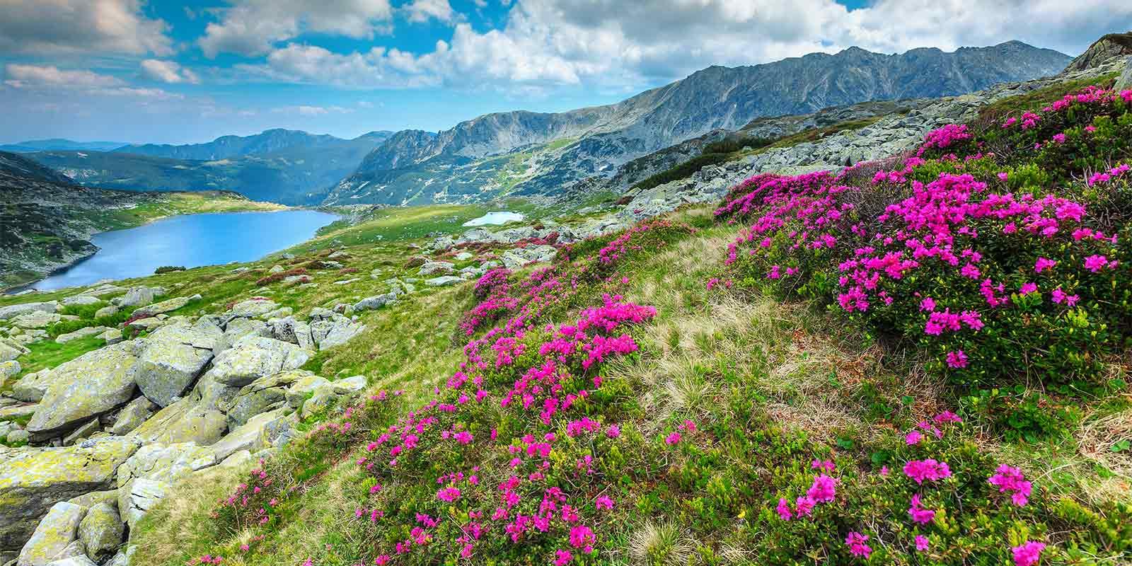Alpine glacial lake in the Carpathian mountains in Romania