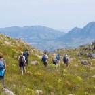 Group trekking at Klein Drakenstein Mountains
