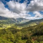 Scenery of Munnar Valley, Kerala, India