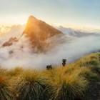 Sunrise over the peak of Meesapulimala, India