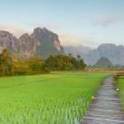 Rice fields near Vang Vieng Laos