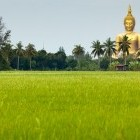Giant buddha in rice field in Angthong provice northern Thailand