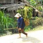 Local farmer walking through village in Vietnam