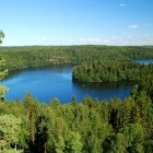 Lake and pine forest in Finland