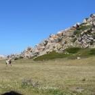 Hikers walking through a meadow in Sardinia