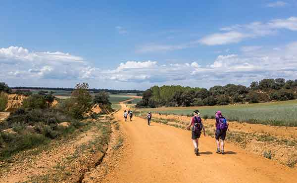 Hikers walking the Camino de Santiago French Way