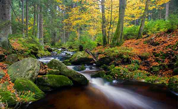 Waterfall in autumn forest along the Harz Witches Trail in Germany